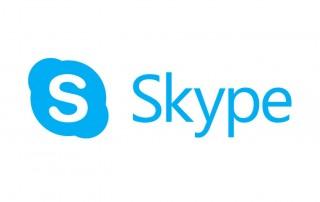 skype mediation
